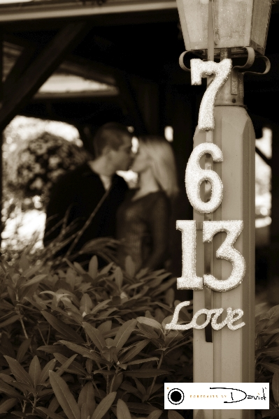 Chandler's wedding engagement photo