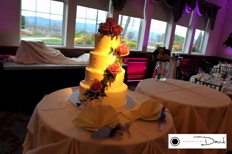 Log cabin Holyoke Ma wedding photography